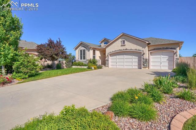 9594 Newport Plum Court, Colorado Springs, CO 80920 (#2375045) :: Action Team Realty