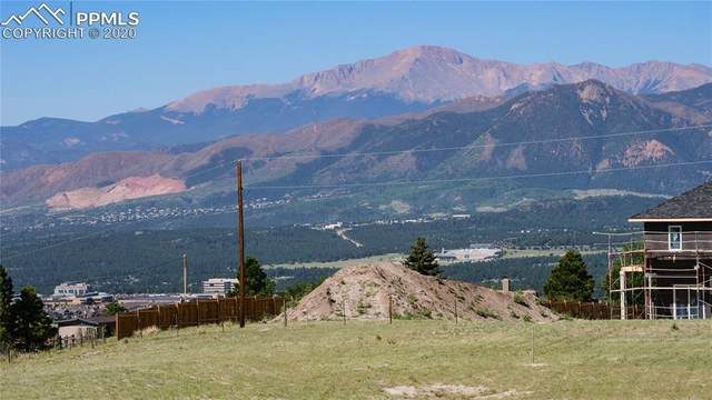 2010 Old North Gate Road, Colorado Springs, CO 80921 (#2378204) :: Venterra Real Estate LLC