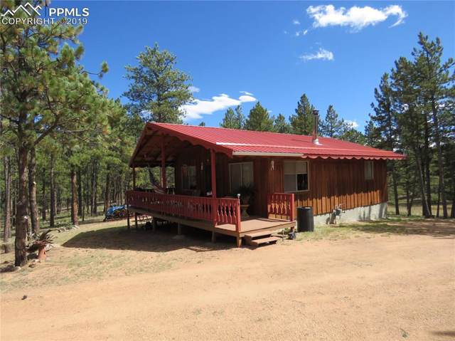 480 Blue Mountain Drive, Florissant, CO 80816 (#2381970) :: Tommy Daly Home Team