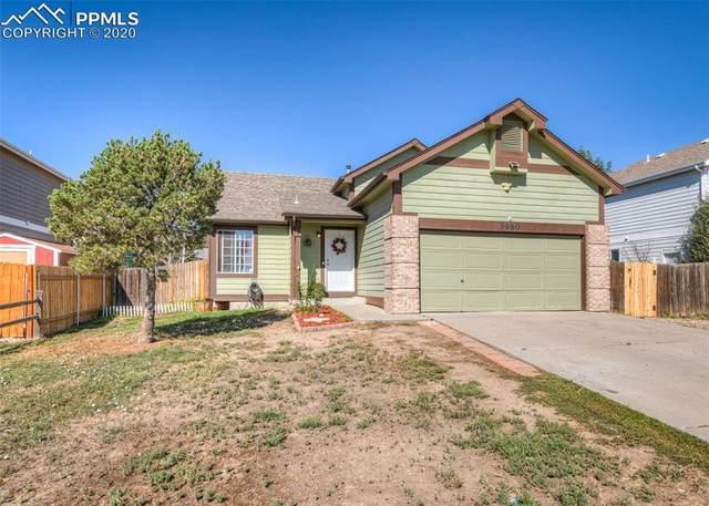 3960 Sleepy Creek Drive, Colorado Springs, CO 80925 (#2389327) :: 8z Real Estate