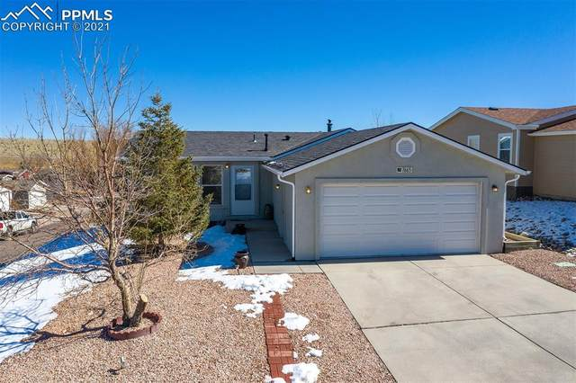 7665 Grosbeak Point, Colorado Springs, CO 80922 (#2389422) :: The Treasure Davis Team | eXp Realty