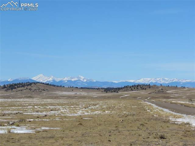 2019 Wahosta Trail, Hartsel, CO 80449 (#2390605) :: CC Signature Group