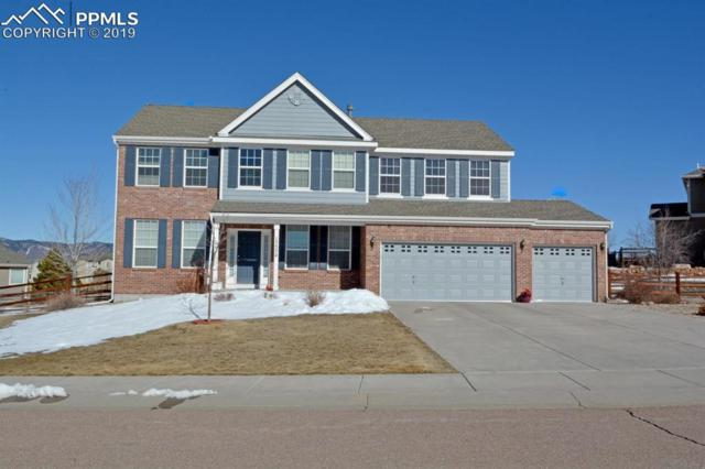 17574 Water Flume Way, Monument, CO 80132 (#2390952) :: Action Team Realty