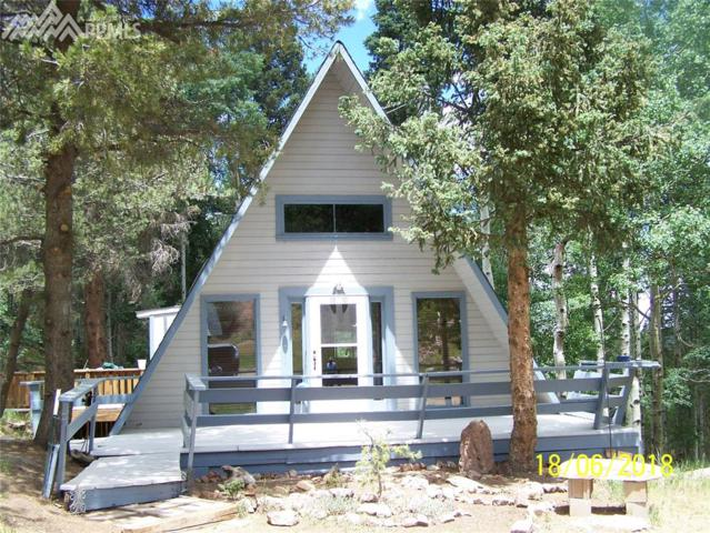 101 Willow Road, Divide, CO 80814 (#2394920) :: 8z Real Estate
