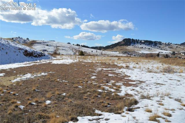 340 Oriole Avenue, Cripple Creek, CO 80813 (#2403686) :: The Peak Properties Group