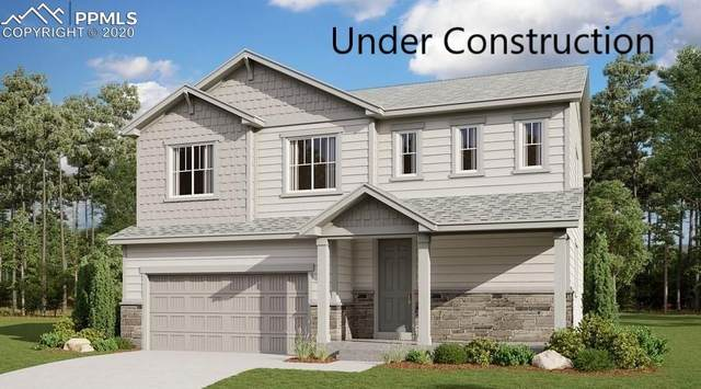 4858 Wolf Moon Drive, Colorado Springs, CO 80911 (#2404692) :: Tommy Daly Home Team