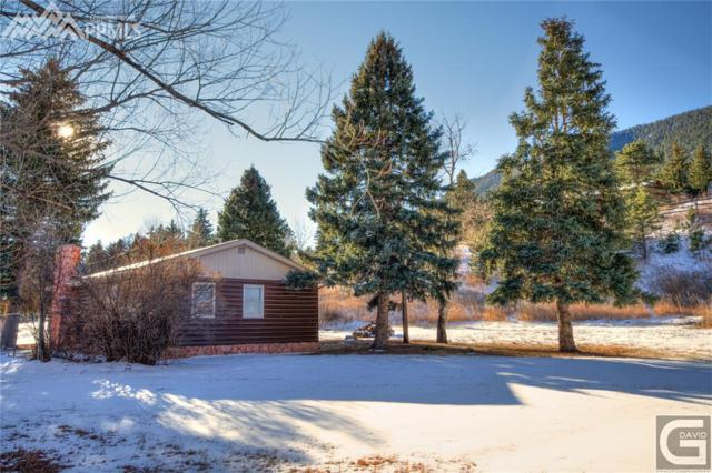 9050 Picabo Lane, Cascade, CO 80809 (#2404956) :: The Dunfee Group - Keller Williams Partners Realty