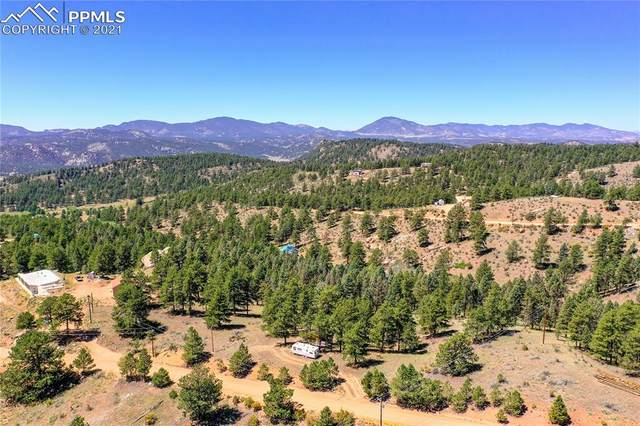 627 Navajo Trail, Florissant, CO 80816 (#2406961) :: Tommy Daly Home Team