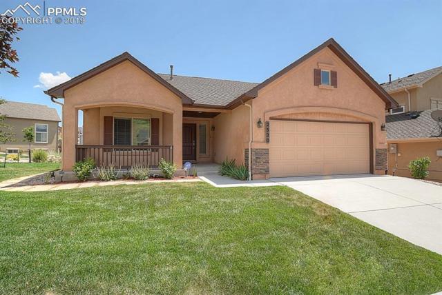 2520 Mirror Lake Court, Colorado Springs, CO 80919 (#2418511) :: 8z Real Estate