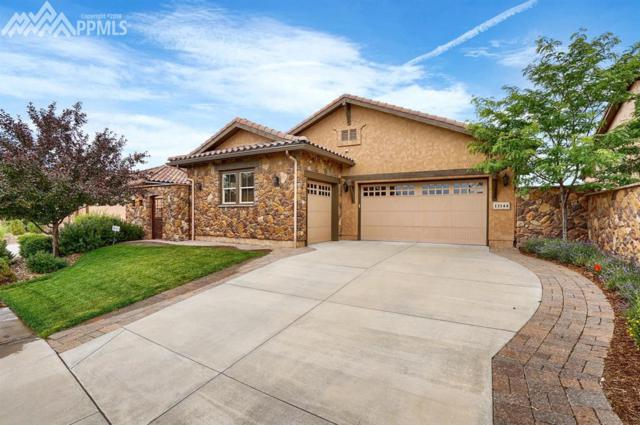 13144 Thumbprint Court, Colorado Springs, CO 80921 (#2419617) :: The Hunstiger Team