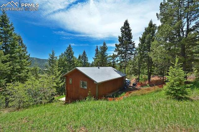 822 W Highway 24 Highway, Woodland Park, CO 80863 (#2424317) :: The Treasure Davis Team