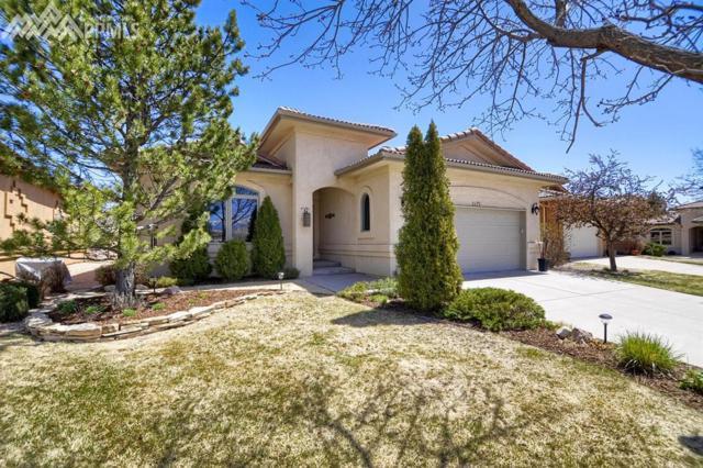 2475 Spanish Oak Terrace, Colorado Springs, CO 80920 (#2424567) :: 8z Real Estate