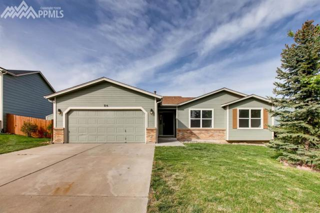 715 Foxwood Drive, Colorado Springs, CO 80911 (#2425854) :: 8z Real Estate