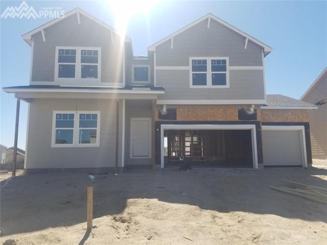 6877 Oak Vine Court, Colorado Springs, CO 80908 (#2429863) :: 8z Real Estate