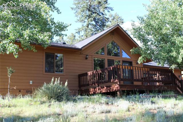 210 E Bowman Avenue, Woodland Park, CO 80863 (#2431422) :: The Treasure Davis Team
