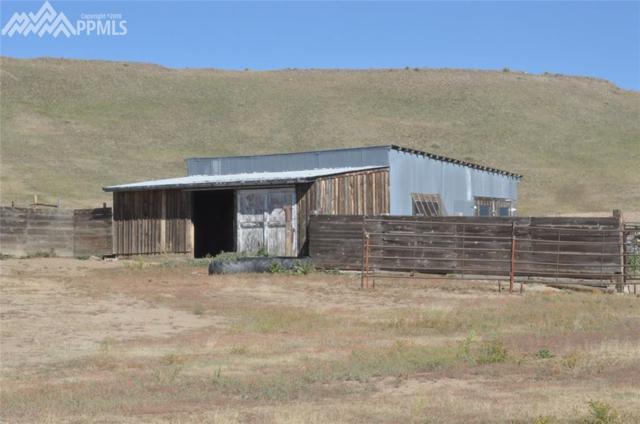 9765 Gusty Ridge Road, Calhan, CO 80808 (#2431862) :: 8z Real Estate