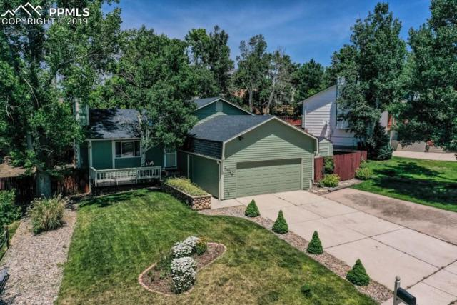 5436 Country Heights Drive, Colorado Springs, CO 80917 (#2433335) :: Tommy Daly Home Team