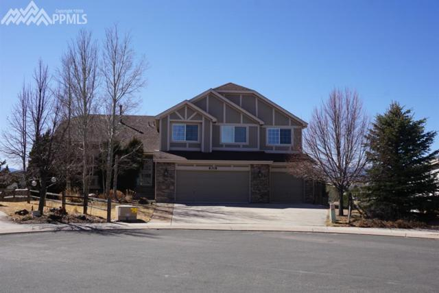 6318 Great Bear Court, Colorado Springs, CO 80923 (#2438561) :: 8z Real Estate