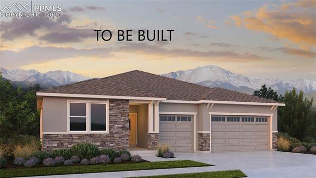 6604 Tumble Creek Drive, Colorado Springs, CO 80924 (#2440943) :: Finch & Gable Real Estate Co.