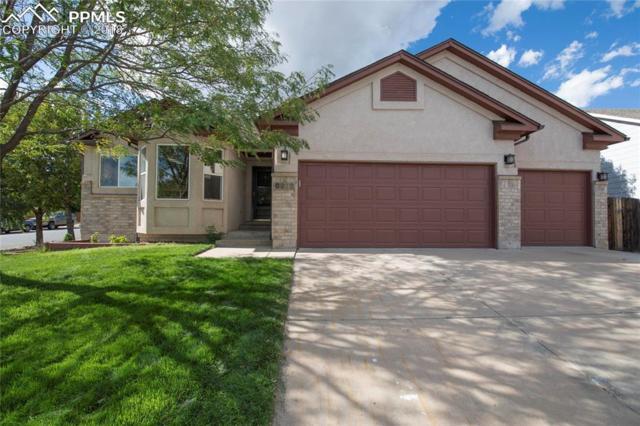 6972 Hillock Drive, Colorado Springs, CO 80922 (#2442380) :: 8z Real Estate