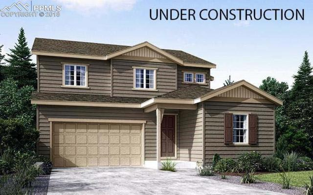 15956 Hayloft Lane, Parker, CO 80134 (#2448117) :: Venterra Real Estate LLC
