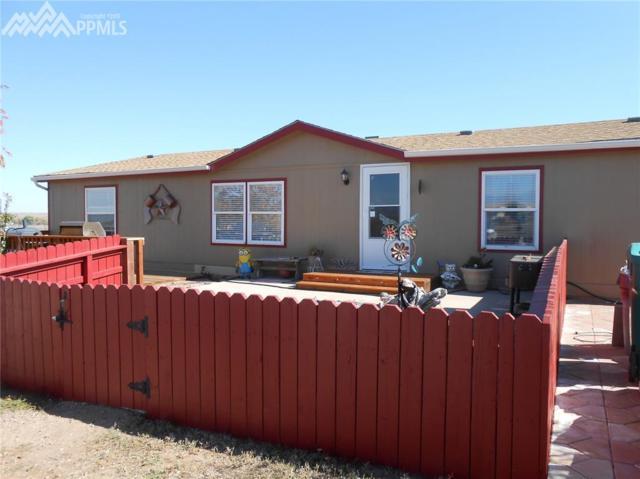 20830 Calle Pacifico Point, Fountain, CO 80817 (#2451215) :: 8z Real Estate