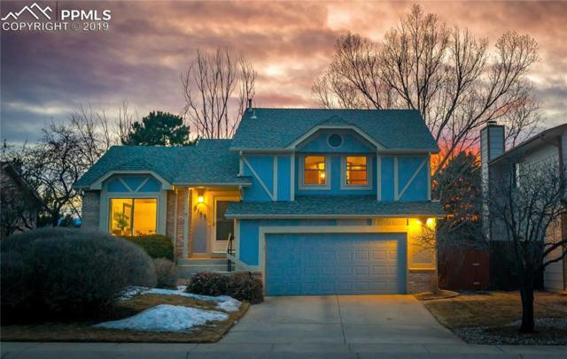 8160 Candleflower Circle, Colorado Springs, CO 80920 (#2454429) :: Tommy Daly Home Team