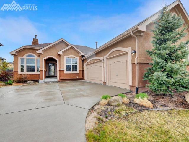 13863 Honey Run Way, Colorado Springs, CO 80921 (#2454970) :: 8z Real Estate