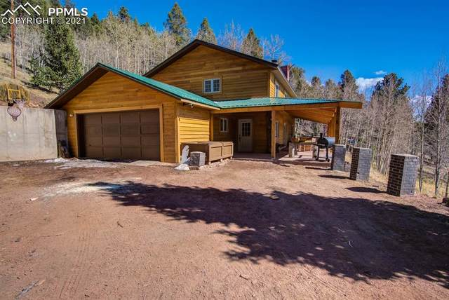 72 Mullite Lane, Divide, CO 80814 (#2459901) :: Venterra Real Estate LLC
