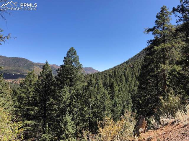 0 Belvedere Avenue, Green Mountain Falls, CO 80819 (#2460294) :: Jason Daniels & Associates at RE/MAX Millennium