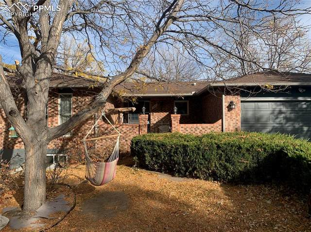 5045 Saddle Drive, Colorado Springs, CO 80918 (#2464418) :: Action Team Realty