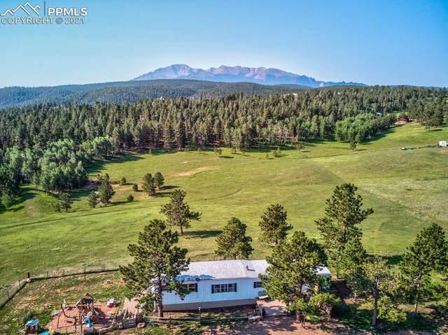 263 Elk Park Road, Woodland Park, CO 80863 (#2469639) :: Finch & Gable Real Estate Co.