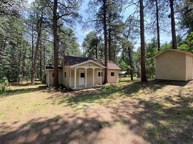 10240 Park Road, Rye, CO 81069 (#2471744) :: Action Team Realty