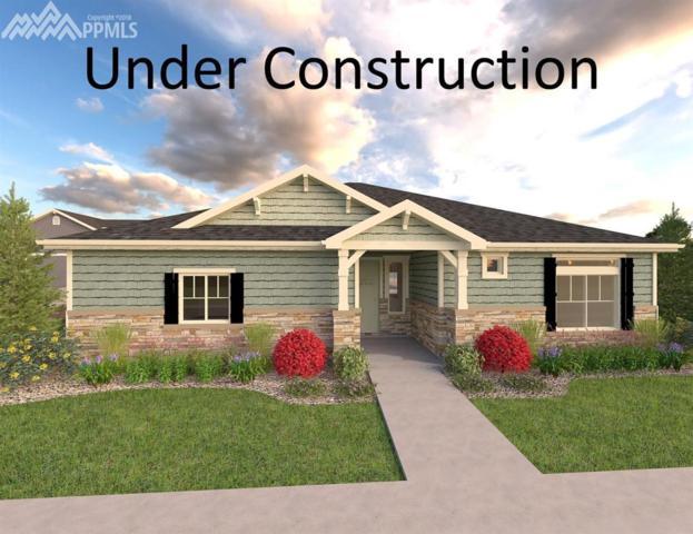 6724 Windbrook Court, Colorado Springs, CO 80927 (#2474827) :: RE/MAX Advantage