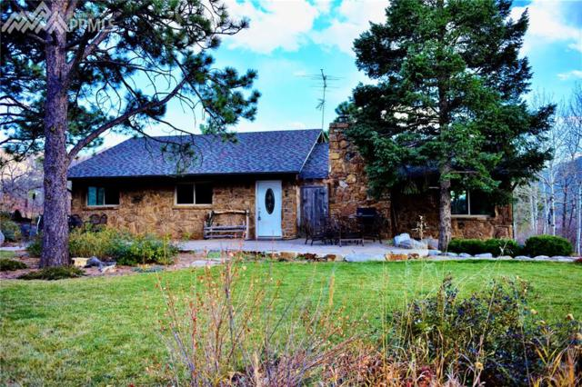 4255 Outpost Road, Cascade, CO 80809 (#2478250) :: The Treasure Davis Team