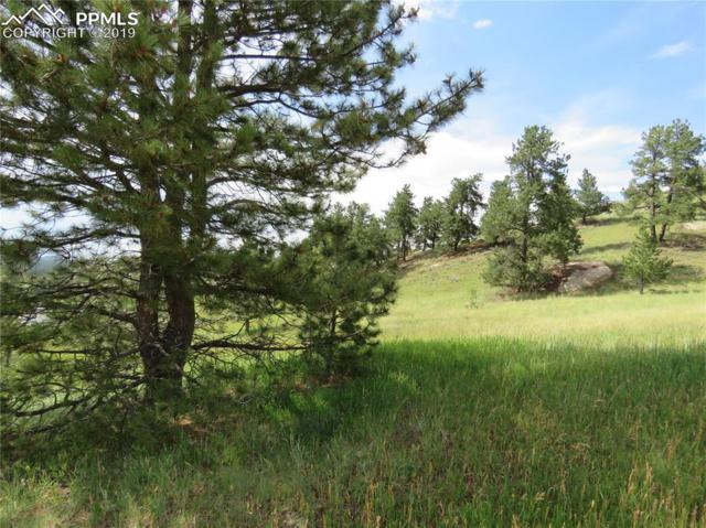 35 Elkhorn Circle, Florissant, CO 80816 (#2484670) :: Jason Daniels & Associates at RE/MAX Millennium