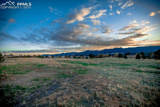 14173 Stone Eagle Place, Colorado Springs, CO 80921 (#2487717) :: Action Team Realty