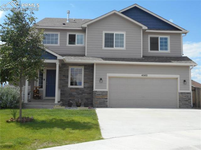 4502 Whirling Oak Way, Colorado Springs, CO 80911 (#2497969) :: Jason Daniels & Associates at RE/MAX Millennium