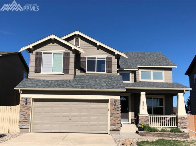 7934 Hunter Peak Trail, Colorado Springs, CO 80924 (#2503357) :: Colorado Home Finder Realty