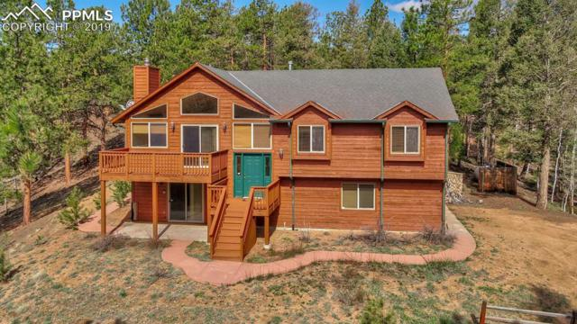 4041 County 25 Road, Woodland Park, CO 80863 (#2507298) :: The Treasure Davis Team