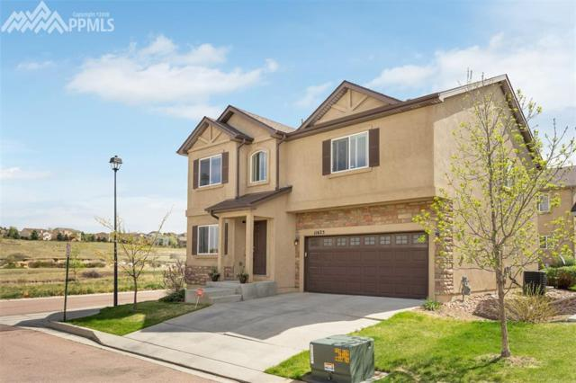 11625 Hibiscus Lane, Colorado Springs, CO 80921 (#2507454) :: The Kibler Group