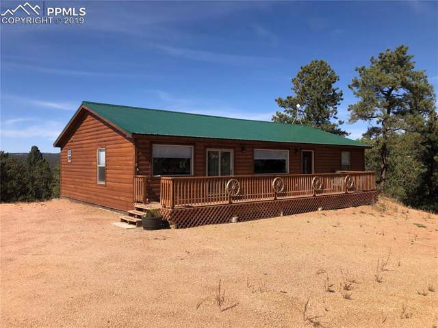 23 Nimbus Lane, Florissant, CO 80816 (#2507821) :: Jason Daniels & Associates at RE/MAX Millennium