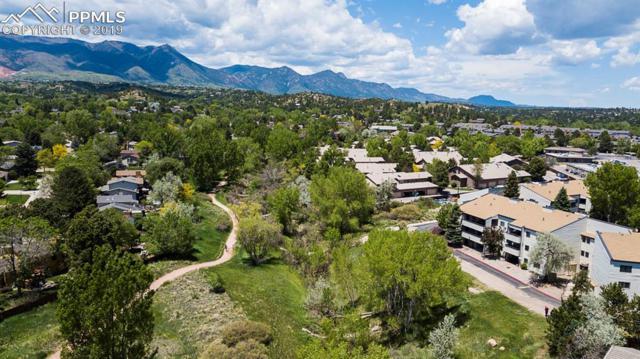6540 Delmonico Drive #103, Colorado Springs, CO 80919 (#2511155) :: The Daniels Team