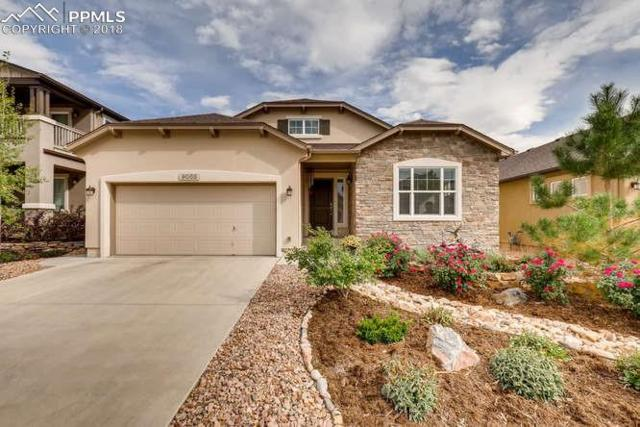 9055 Rollins Pass Court, Colorado Springs, CO 80924 (#2515401) :: 8z Real Estate