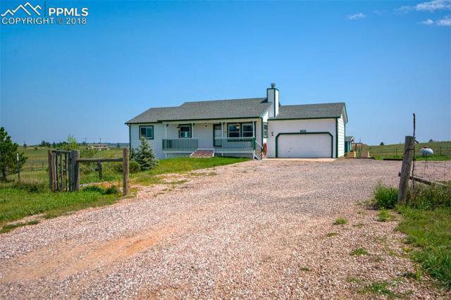 13585 Woodlake Road, Elbert, CO 80106 (#2516516) :: 8z Real Estate