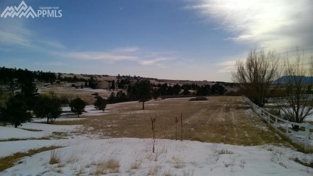 12625 Abert Way, Colorado Springs, CO 80908 (#2519897) :: 8z Real Estate