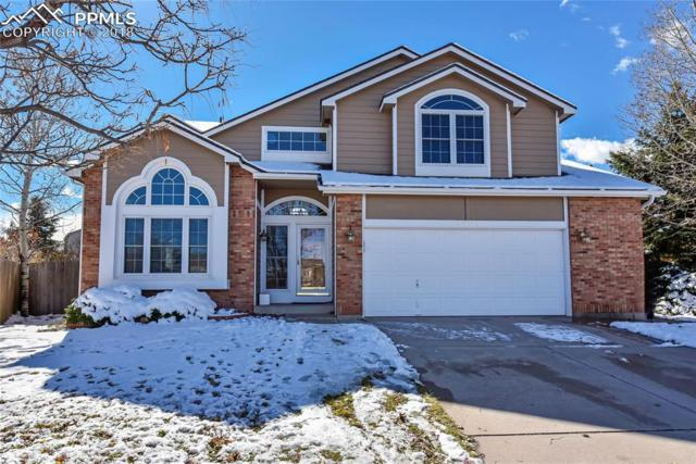 3625 Siena Court, Colorado Springs, CO 80920 (#2523441) :: The Kibler Group