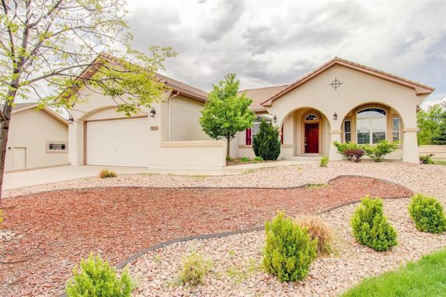 9954 Glenrose Circle, Colorado Springs, CO 80920 (#2530155) :: 8z Real Estate