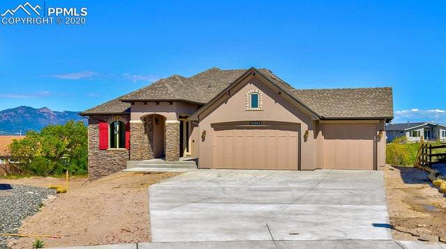 10352 Stagecoach Park Court, Colorado Springs, CO 80924 (#2530532) :: The Treasure Davis Team