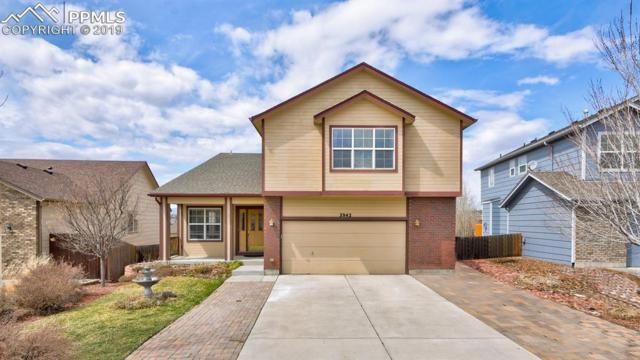 3942 Sonoran Drive, Colorado Springs, CO 80922 (#2536281) :: Perfect Properties powered by HomeTrackR